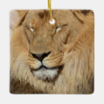Adorable Lion Ceramic Ornament