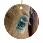Horse Vision Ornament