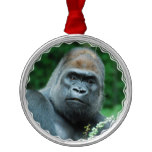 Perplexed Gorilla Metal Ornament